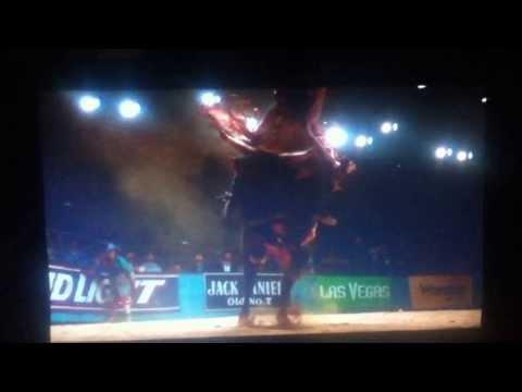 Cowboy Up La Ultma Monta (Zapata)