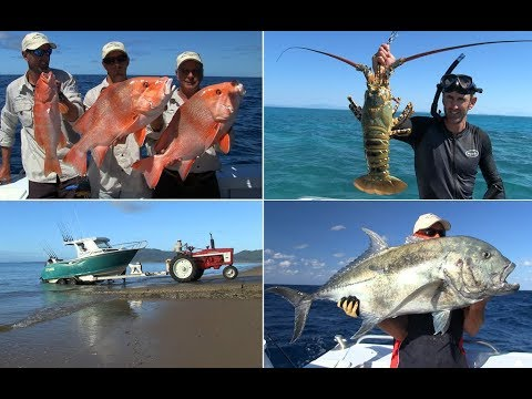Wicked Fishing Off Kurrimine Beach North Queensland