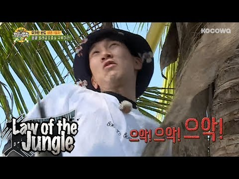 Eun Kwang Im so scared of bugs!! Law of the Jungle Ep 316
