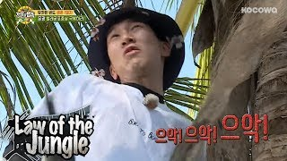 "Eun Kwang ""I'm so scared of bugs!!"" [Law of the Jungle Ep 316]"