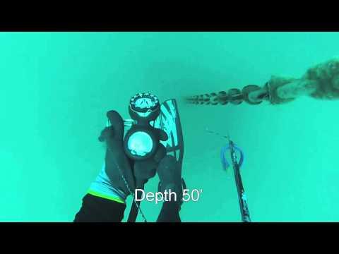 M/V Kinta buoy chain/thermocline