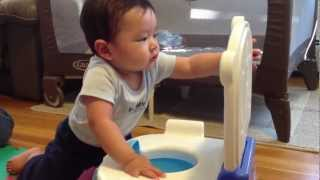 Fatherhood - 2nd Potty Seat