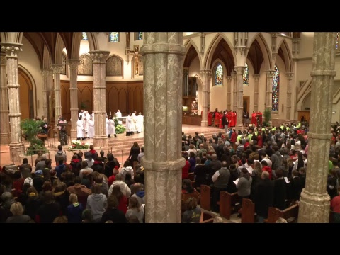 Archdiocesan Mass for Life