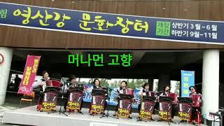 ★김동심★ 아코디언 메들리 (영산강 문화장터 2018 …
