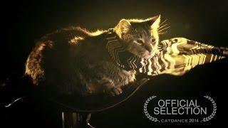 Catdance Finalist 2014: The Inheritance