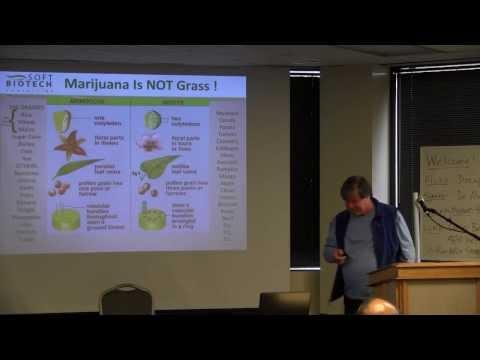 Dr. Alan Gould: