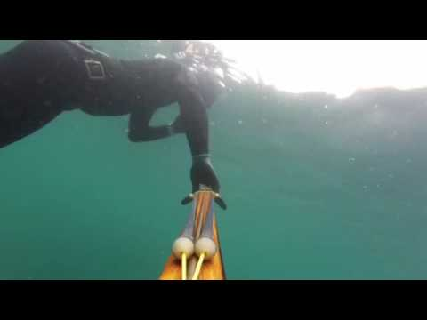 The East Sea Spearfishing