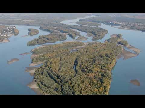 Начало крупнейшей реки Обь