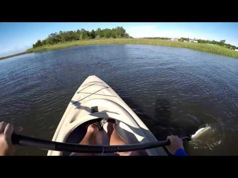 Kayaking yak yak don't come back