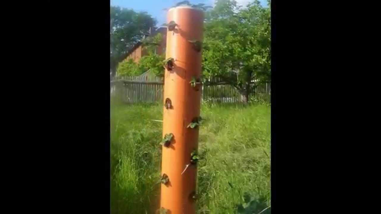 Vertikale Gärten Bauanleitung vertikaler garten vertikale blumenrohre