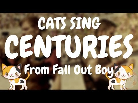 Cats Sing Centuries by Fall Out Boy | Cats Singing Song