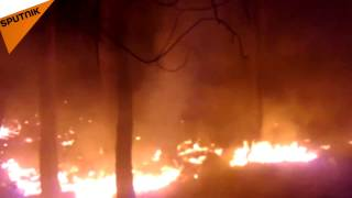 بالفيديو...حرائق ريف اللاذقية بعيدة عن مواقع الاشتباك والمسلحون متهمون