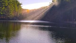 Coggshall Pond Serenity