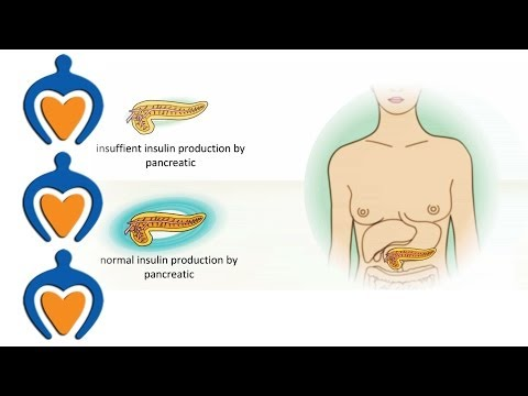 Diabetes - The different types of diabetes...