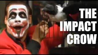 Bryan & Vinny: The Origin of Impact Crow
