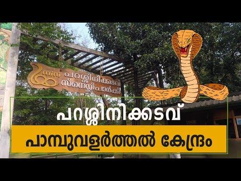 Parassinikkadavu Kannur Snake Park - Kochi Goa Road Trip Part 6