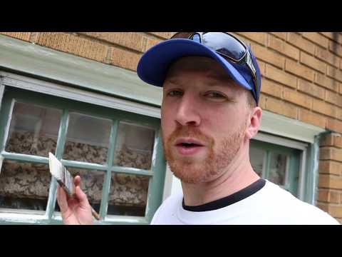 Painting Exterior Wood Windows with Sherwin Williams Duration