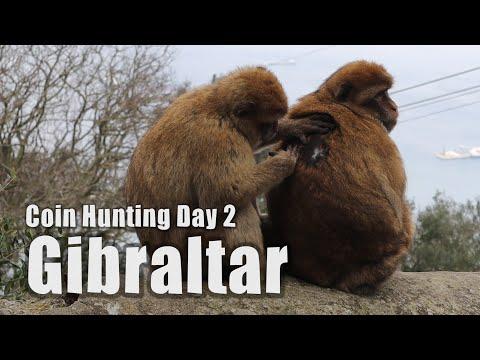 ⚠️ MONKEY ATTACKS 🐵 Gibraltar Coin Hunting 2  - Travel Vlog