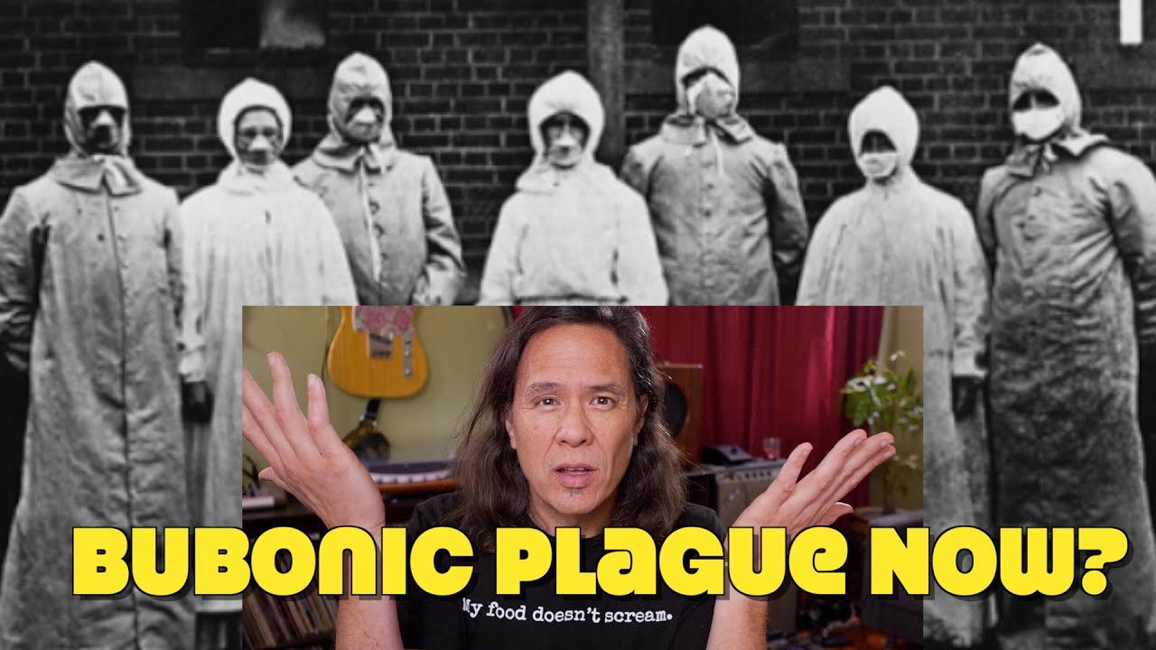 Bubonic Plague is Back? People, Please Stop Eating Meat! Please!