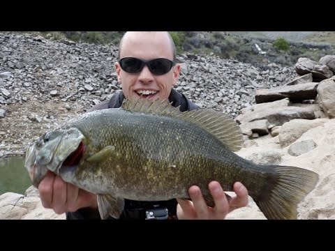 Big Smallmouth + Rainbow Trout Catch N' Cook