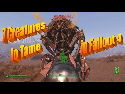 7 More Creatures You Can Tame In Fallout 4