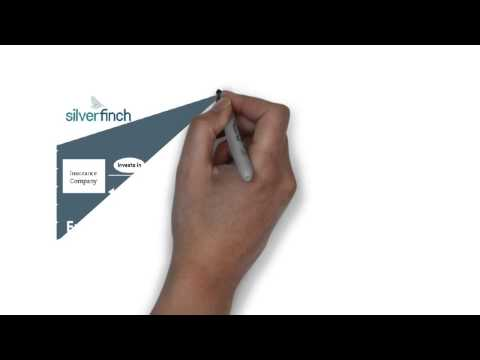 Silverfinch- Solving Look-Through for Solvency II