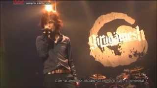Girugamesh - Jarring fly (Versión Chiba) Sub Español