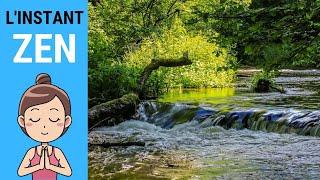 L'INSTANT ZEN #006 - Forêt et ruisseau