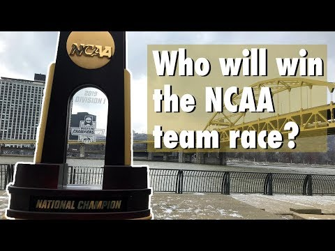 2019 NCAA Wrestling Team Championship Predictions