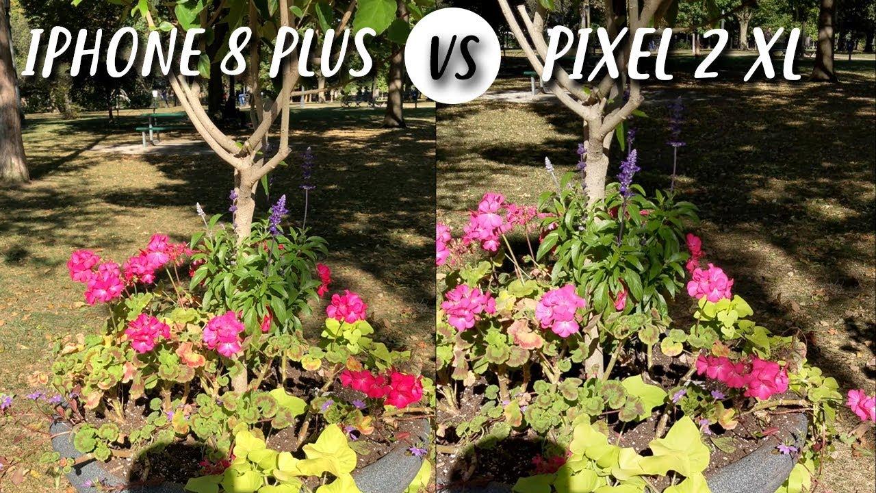 Google Pixel 2 Vs Iphone 8 Plus Camera