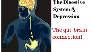 Digestive System and Depression