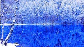 4K Japan Mishaka Pond of winter Christmas colors / Jesus Bleibet Meine Freude / 絶景 冬景色の御射鹿池