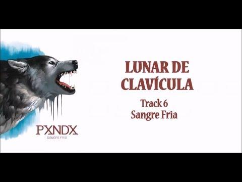 Lunar de Clavícula - Panda (Letra) HD