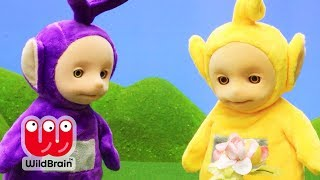 Teletubbies - Growing Flowers with The Teletubbies | Compilation | WildBrain Kids TV Shows