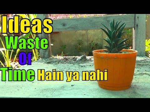 Gardening Ideas Waste of Time Hain Ya Nahi ( Meri Opinion )