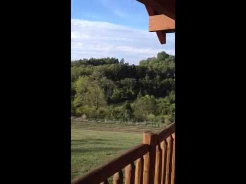 Ott Spot back deck