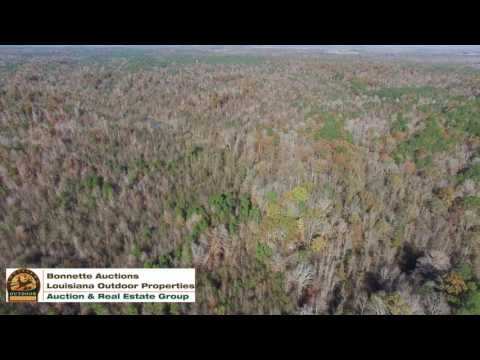 647 acres of land for sale in Caldwell Parish Louisiana