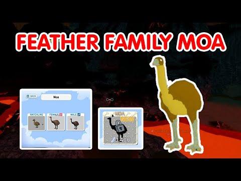 Download FEATHER FAMILY MOA BIRD [PREHISTORIC BIG BOI!?]