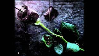 IBO - Schwarze Rose (Discofox Remix.