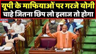 Download CM Yogi ने यूपी के माफियाओं पर कही बड़ी बात । Headlines India