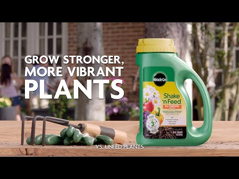 How to Use Miracle-Gro® Shake 'n Feed® Plant Food to Feed All Your Plants
