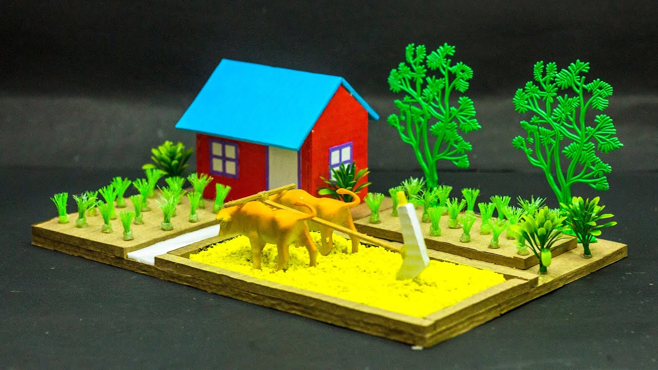 Science Projects   Agriculture Model