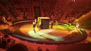 """В кировском цирке """"Шоу Слонов""""!!!!"""