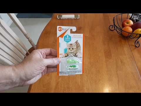 Review HEXBUG Nano Interactive Automatic Robotic Cat Toy Like Bug Or Mouse.
