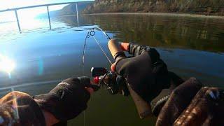 ЧТО ЖЕ Я РАНЬШЕ ТАК НЕ ЛОВИЛ ВОТ ЭТО УДАРЫ рыбалка весной 2020