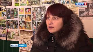 В Брянске обсуждают закон о защите животных