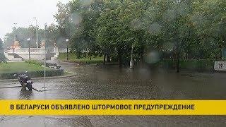 Штормовое предупреждение объявлено в Беларуси 24 и 25 сентября