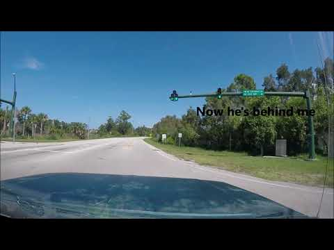 Getting Pulled Over With 2 Firearms - Florida