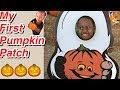 Halloween Pumpkin Patch Adventure Video for Kids Family Friendly Videos   Amir tv