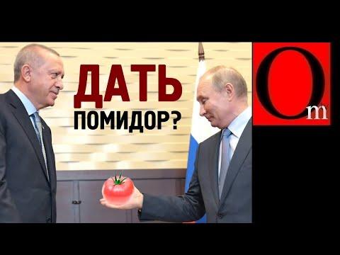 Три помидора в спину бункерному от Эрдогана